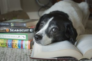 A dog lays with its head on a pile of books.