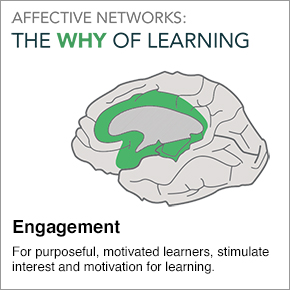 Affective Networks